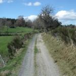chemin de Grandviala après le débroussaillage