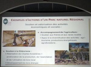 PNR actions